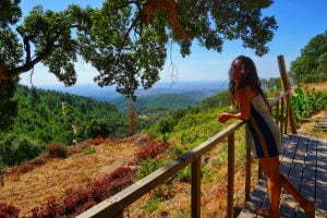 Read more about the article Travel Volunteer Experience #1: Living 2 months in a yurt in Portugal